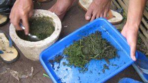 Pestisida organik merupakan ramuan obat-obatan untuk mengendalikan hama dan penyakit tanaman yang dibuat dari bahan-bahan alami. Bahan-bahan untuk membuat pestisida organik diambil dari tumbuhan-tumbuhan, hewan dan mikroorganisme. Karena dibuat dari bahan-bahan yang terdapat di alam bebas, pestisida jenis ini lebih ramah lingkungan dan lebih aman bagi kesehatan manusia. Bila dibandingkan dengan pestisida kimia, pestisida organik mempunyai beberapa kelebihan. Pertama, lebih ramah terhadap alam, karena sifat material organik mudah terurai menjadi bentuk lain. Sehingga dampak racunnya tidak menetap dalam waktu yang lama di alam bebas. Kedua, residu pestisida organik tidak bertahan lama pada tanaman, sehingga tanaman yang disemprot lebih aman untuk dikonsumsi. Ketiga, dilihat dari sisi ekonomi penggunaan pestisida organik memberikan nilai tambah pada produk yang dihasilkan. Produk pangan non-pestisida harganya lebih baik dibanding produk konvensional. Selain itu, pembuatan pestisida organik bisa dilakukan sendiri oleh petani sehingga menghemat pengeluaran biaya produksi. Keempat, penggunaan pestisida organik yang diintegrasikan dengan konsep pengendalian hama terpadu tidak akan menyebabkan resistensi pada hama. Namun ada beberapa kelemahan dari pestisida organik, antara lain kurang praktis. Pestisida organik tidak bisa disimpan dalam jangka lama. Setelah dibuat harus segera diaplikasikan sehingga kita harus membuatnya setiapkali akan melakukan penyemprotan. Selain itu, bahan-bahan pestisida organik lumayan sulit didapatkan dalam jumlah dan kontinuitas yang cukup. Dari sisi efektifitas, hasil penyemprotan pestisida organik tidak secepat pestisida kimia sintetis. Perlu waktu dan frekuensi penyemprotan yang lebih sering untuk membuatnya efektif. Selain itu, pestisida organik relatif tidak tahan terhadap sinar matahari dan hujan. Namun seiring perkembangan teknologi pertanian organik akan banyak inovasi-inovasi yang ditemukan dalam menanggulangi hambatan itu. Beberapa cara 