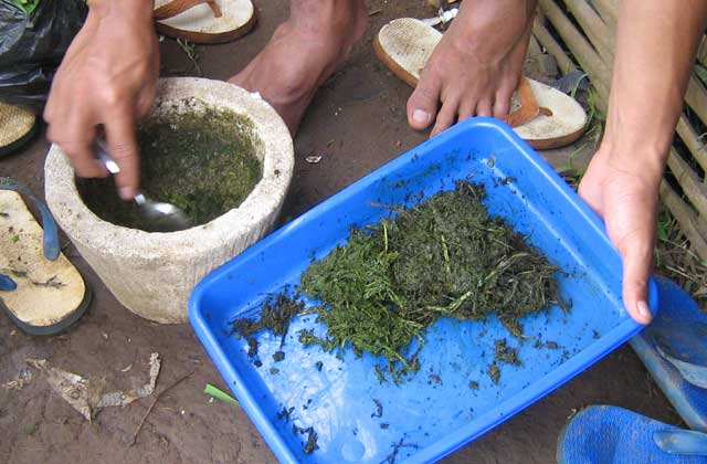 Pestisida organik merupakan ramuan obat-obatan untuk mengendalikan hama dan penyakit tanaman yang dibuat dari bahan-bahan alami. Bahan-bahan untuk membuat pestisida organik diambil dari tumbuhan-tumbuhan, hewan dan mikroorganisme. Karena dibuat dari bahan-bahan yang terdapat di alam bebas, pestisida jenis ini lebih ramah lingkungan dan lebih aman bagi kesehatan manusia.  Bila dibandingkan dengan pestisida kimia, pestisida organik mempunyai beberapa kelebihan. Pertama, lebih ramah terhadap alam, karena sifat material organik mudah terurai menjadi bentuk lain. Sehingga dampak racunnya tidak menetap dalam waktu yang lama di alam bebas. Kedua, residu pestisida organik tidak bertahan lama pada tanaman, sehingga tanaman yang disemprot lebih aman untuk dikonsumsi. Ketiga, dilihat dari sisi ekonomi penggunaan pestisida organik memberikan nilai tambah pada produk yang dihasilkan. Produk pangan non-pestisida harganya lebih baik dibanding produk konvensional. Selain itu, pembuatan pestisida organik bisa dilakukan sendiri oleh petani sehingga menghemat pengeluaran biaya produksi. Keempat, penggunaan pestisida organik yang diintegrasikan dengan konsep pengendalian hama terpadu tidak akan menyebabkan resistensi pada hama.  Namun ada beberapa kelemahan dari pestisida organik, antara lain kurang praktis. Pestisida organik tidak bisa disimpan dalam jangka lama. Setelah dibuat harus segera diaplikasikan sehingga kita harus membuatnya setiapkali akan melakukan penyemprotan. Selain itu, bahan-bahan pestisida organik lumayan sulit didapatkan dalam jumlah dan kontinuitas yang cukup. Dari sisi efektifitas, hasil penyemprotan pestisida organik tidak secepat pestisida kimia sintetis. Perlu waktu dan frekuensi penyemprotan yang lebih sering untuk membuatnya efektif. Selain itu, pestisida organik relatif tidak tahan terhadap sinar matahari dan hujan. Namun seiring perkembangan teknologi pertanian organik akan banyak inovasi-inovasi yang ditemukan dalam menanggulangi hambatan itu.  Beberapa ca