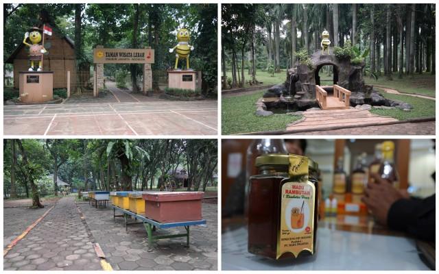 Belanja dan belajar di taman wisata lebah