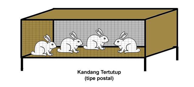 Kandang kelinci tipe postal