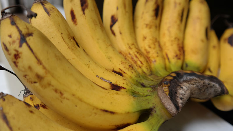 Buah pisang barangan