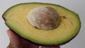 Kandungan nutrisi dan manfaat buah alpukat